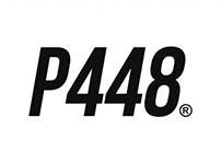 SMASH BOX P448